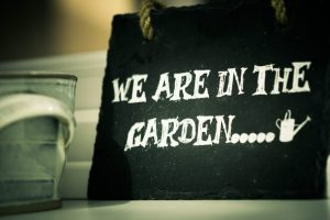 relaxing-garden-countryside-chilling-58086